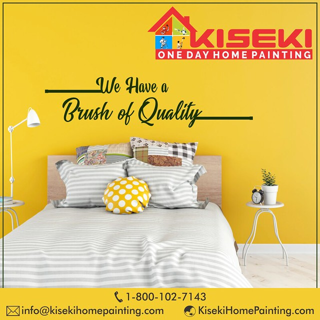 KISEKI One Day Home Painting Service  Provider in Delhi NCR