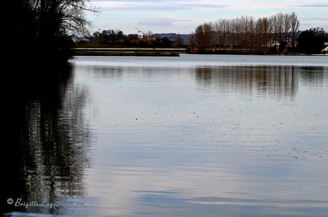Grand calme d'hiver sur le lac