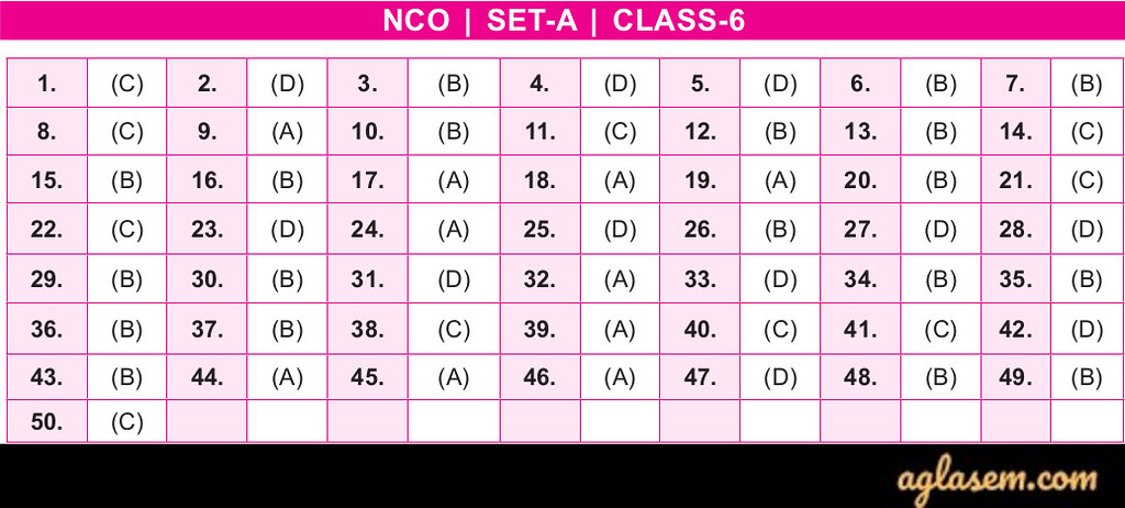 19th NCO 2019 - 2020 Answer Keys - Class 6