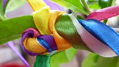 6 ribbons - HMM!