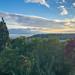 View towards Elliot Bay