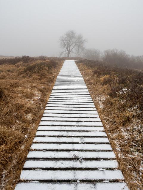 Onderweg naar winterland