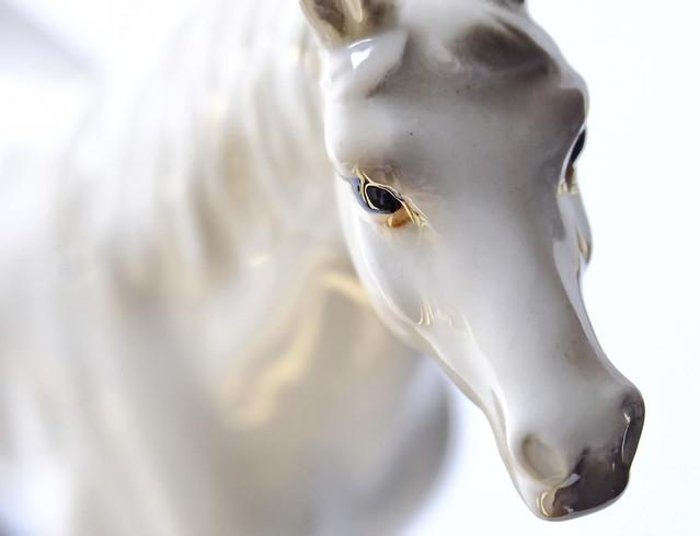 Little High Horse