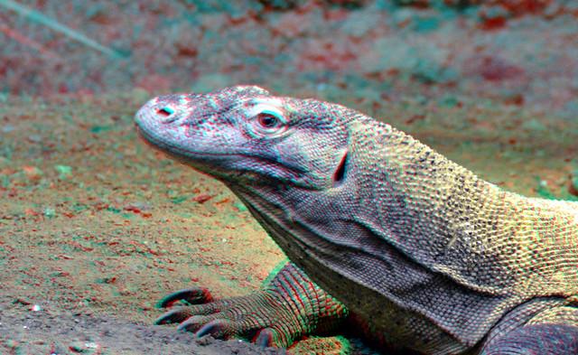 Komodo 3D