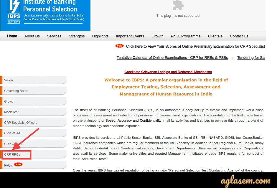 IBPS RRB Apply Online 2020