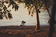 2019.07_Malawi_Lake Malawi
