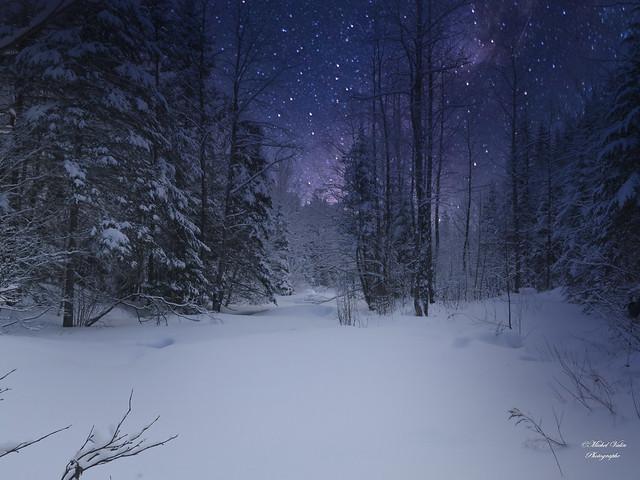 Soirée hivernale / Winter evening