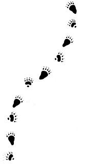 karhu foot steps new