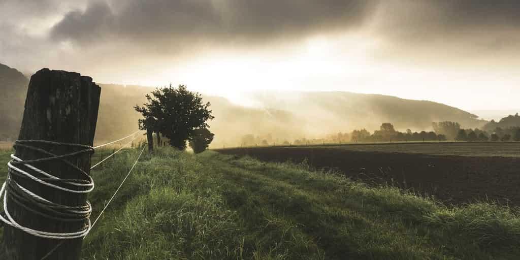 Le système agricole ne peut nourrir que 3,4 milliards d'humains