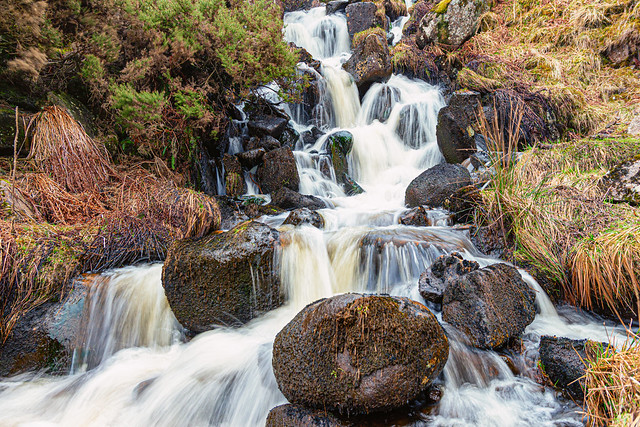 A trickle of water