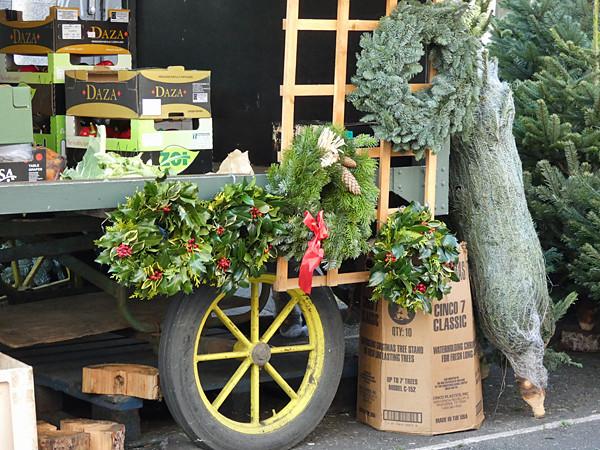 roue et fleurs