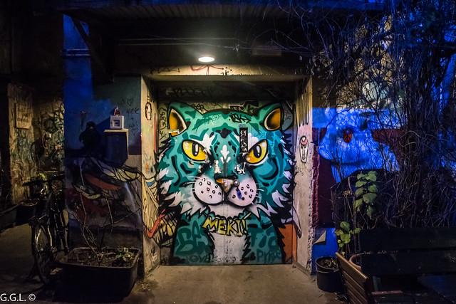 Dead Chicken Alley. Berlin. Gefahr Katze.