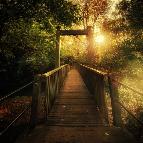 landscape buckingham sun bridge