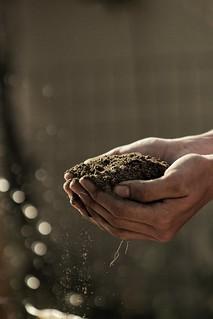 blended soils charlotte nc