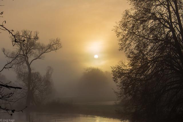 morgens am Fluss