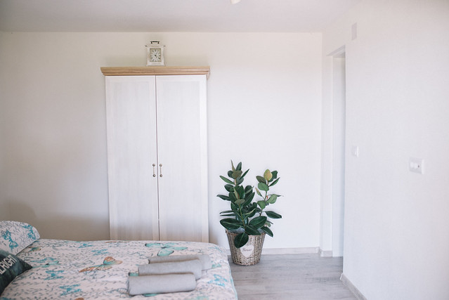 A white room interior with a plant and closet and a bed