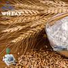 Wheat and Semolina Mill