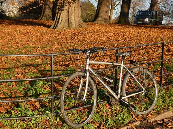 vélo dans les feuilles mortes