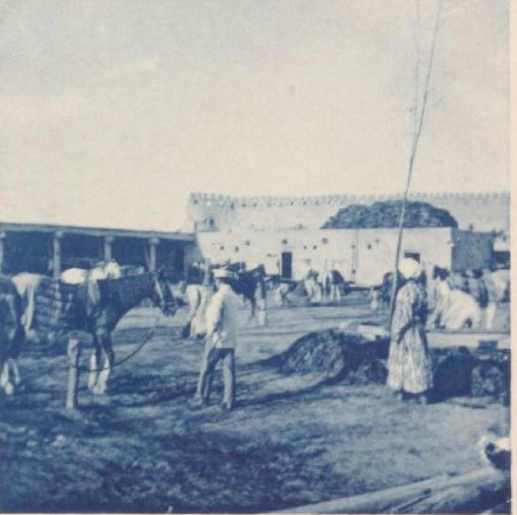 13. Бухара. Конюшни эмира, 22 мая 1898 года