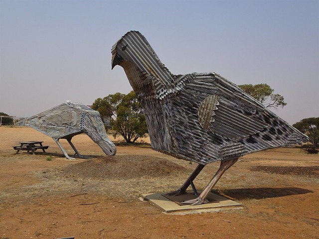 Patchewollock. Giant metal and iron Mallee Fowl. They live near this town in the bush and in Wyperfield National Park. This is the start of the Victorian Silo Art Trail.