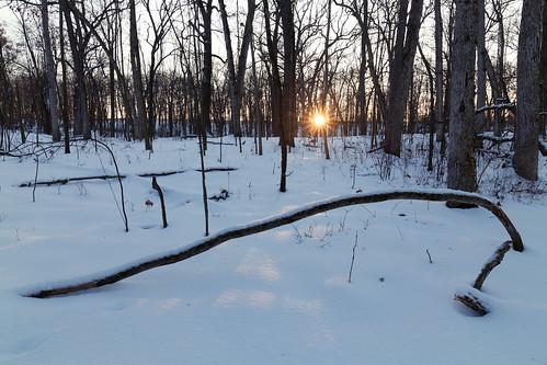 asylumlakepreserve kalamazoo kalamazoocounty michigan us unitedstates landscape nature outdoor park snow sunny winter unitedstatesofamerica explored