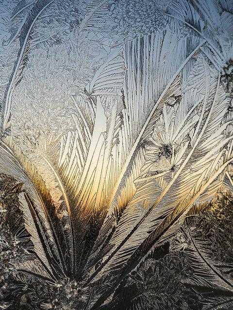 Ice art at sundown