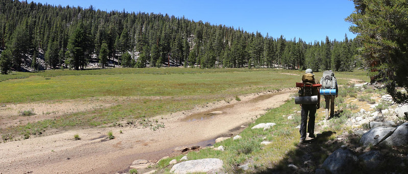 The water in the meadow was mostly gone this late in the Summer but the meadow was still green