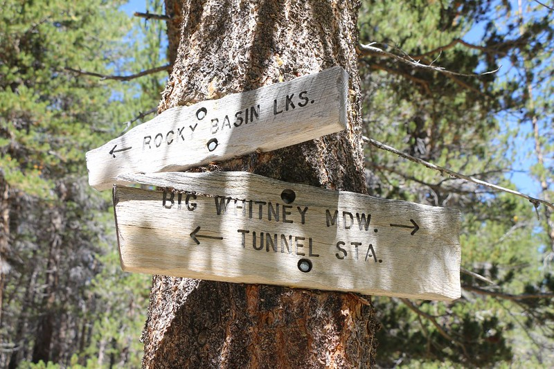 Trail signs along Golden Trout Creek where the old trail to Rocky Basin Lakes heads northwest