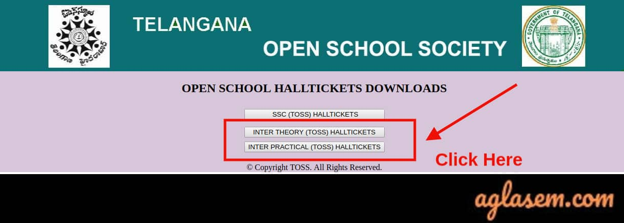 TOSS Inter Hall Ticket April 2020