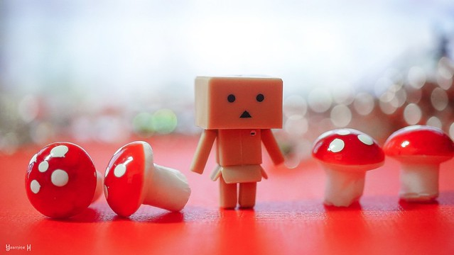 Red Danbo World - 7998