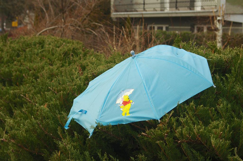 Niebieski parasol / Blue umbrella
