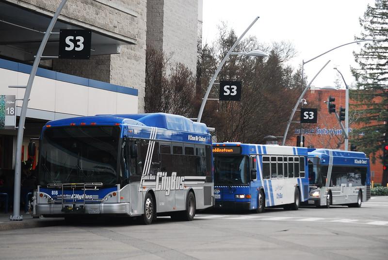 Santa Rosa City Bus Lineup at Transit Mall