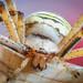 Tygrzyk paskowany (Argiope bruennichi)