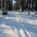 Klasická brdská cesta s prošlapanou stopou, foto: Jan Hocek