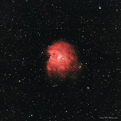 NGC 2174 Monkey Head Nebula