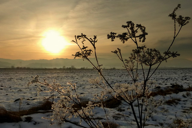 Winter and sunset