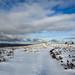 Bývalé dopadové plochy pod Tokem a Houpákem jsou holé a v zimě tu  panují stejně drsné podmínky jako na horách, foto: Jan Hocek