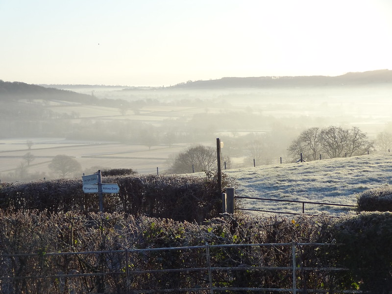 Frosty Morning: Signposts