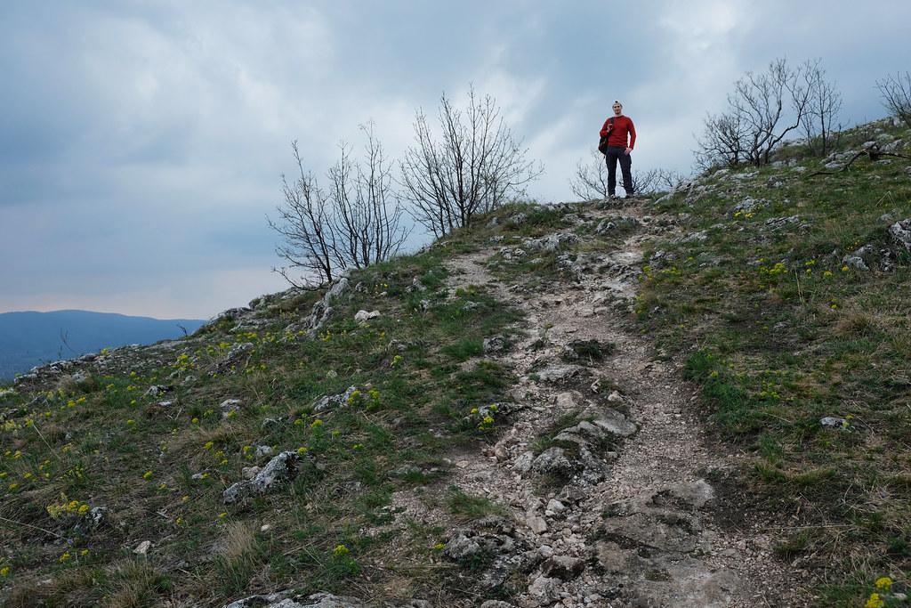 Buda Hills, Hungary