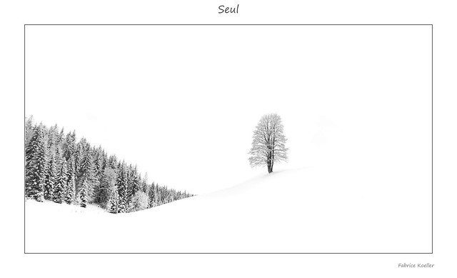Seul dans les hautes Combes (Jura) - Version high key