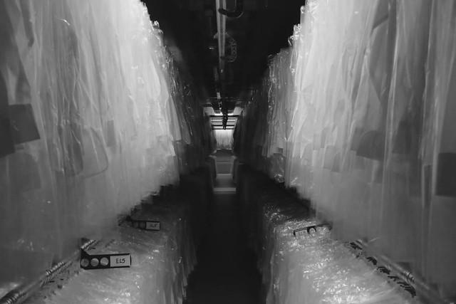 Shirt Tunnel 2