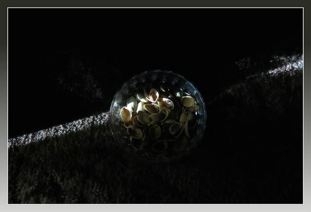 0372 Shell light - ribbit frame