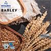 Barley Mills
