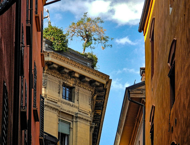 private garden overlooking the city of Bologna