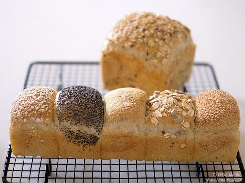 ライ麦パン 20200120-DSCT8325 (3)