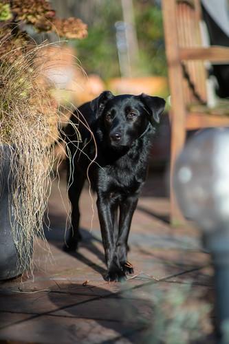 Betti in the sun