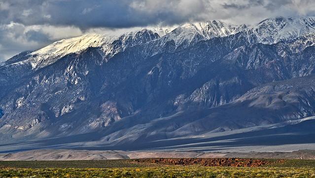 The White Mountains, California, near the Nevada border.