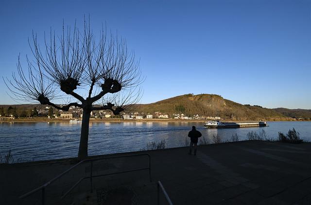 Winternachmittag am Rhein *** winter afternoon at the river Rhine