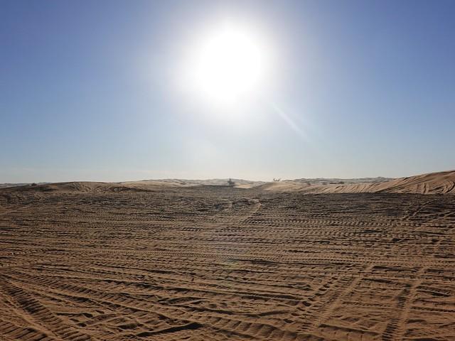 Sun Beats Down on the Tracked Dunes SR602086