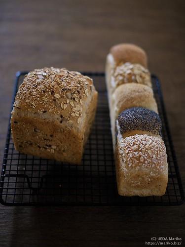 ライ麦パン 20200120-DSCT8349 (2)